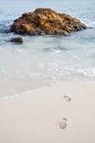 Rocha no mar Fotografia de Stock Royalty Free