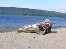 Rocha no Pembroke Canadá, America do Norte Imagem de Stock