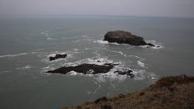 Rocha Portreath Cornualha norte Inglaterra Reino Unido da gaivota video estoque