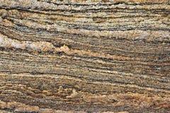 Rocha sedimentar Imagem de Stock Royalty Free