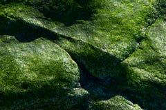 Rocha verde IV Foto de Stock Royalty Free