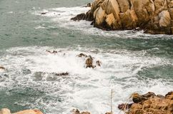 Rochas amarelas que aumentam das profundidades do mar azul esverdeado Imagem de Stock