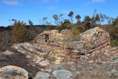 Rochas azuis das montanhas Imagem de Stock