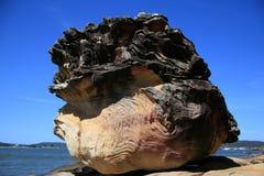 Rochas da praia de Umina fotos de stock royalty free