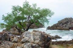 rochas das ondas das separações fotos de stock