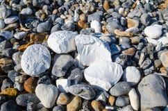 Rochas do giz da costa de Inglaterra Imagens de Stock Royalty Free