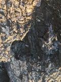 Rochas do mar imagens de stock royalty free