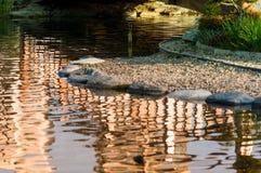 Rochas do ornamento em uma lagoa Fotografia de Stock