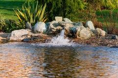 Rochas do ornamento em uma lagoa Imagem de Stock Royalty Free