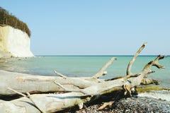 Rochas do penhasco de giz da ilha de Rugen em Sassnitz & em x28; Germany& x29; fotografia de stock