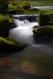 Rochas e água Mossy Fotografia de Stock Royalty Free
