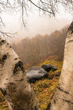 Rochas e árvores em Val de Aran Fotos de Stock Royalty Free