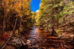 Rochas e córrego em Colorado imagens de stock