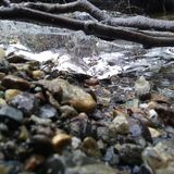 Rochas e gelo em The Creek Fotografia de Stock