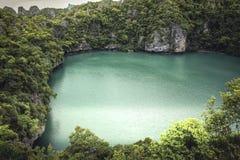 Rochas e palmeiras tropicais da pedra calcária da paisagem da lagoa da baía com o mar da folha luxúria e da turquesa foto de stock royalty free