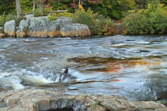 Rochas e Rapids do rio dos alces Fotografia de Stock Royalty Free