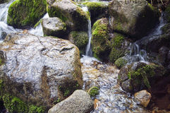 Rochas em The Creek Fotografia de Stock