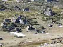 Rochas em uma planície nas montanhas nevado Fotos de Stock Royalty Free