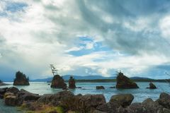 Rochas Intertidal na baía de Tillamook imagens de stock royalty free