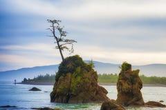 Rochas Intertidal na baía de Tillamook fotos de stock royalty free