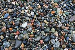 Rochas molhadas da praia Fotografia de Stock