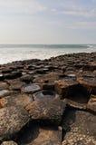 Rochas molhadas na calçada de Giants Fotos de Stock