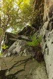 Rochas na natureza Imagem de Stock