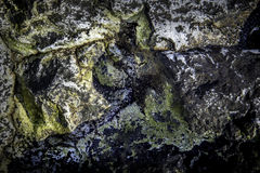 Rochas no litoral pacífico Foto de Stock Royalty Free