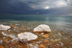 Rochas, overgrown com sal Foto de Stock Royalty Free