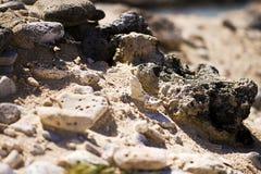 Rochas, pedras e areia Fotos de Stock Royalty Free