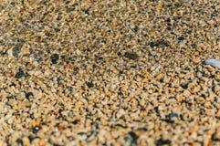 Rochas pequenas na praia Foto de Stock