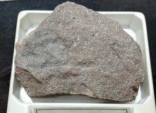 Rochas sedimentares do Brownstone fotografia de stock
