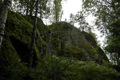Rochas verdes do musgo fotografia de stock royalty free