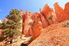 Rochas vermelhas majestosas na garganta de Bryce Imagem de Stock Royalty Free