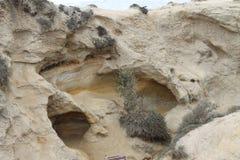 Roche érodée chez Torrey Pines State Park photos stock