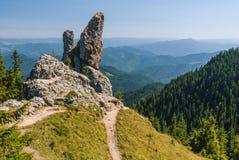 Roche étrange sur la montagne Images stock