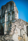 Roche Abbey Ruins Maltby UK. Roche Abbey Maltby Yorkshire UK Royalty Free Stock Photo