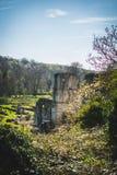 Roche Abbey Ruins Maltby UK Stock Photo