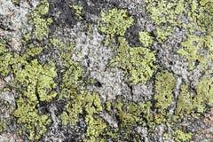 roche colorée Photos libres de droits