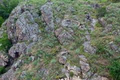 Roche couverte d'herbe Images libres de droits