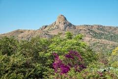 Roche d'exécution de réserve naturelle de mantenga de l'Afrique du Sud Souaziland images stock