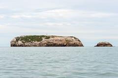 Roche dans l'océan pacifique Photographie stock libre de droits