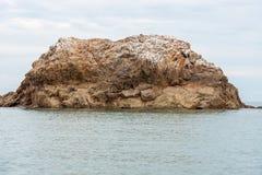 Roche dans l'océan pacifique Photo libre de droits