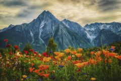 Roche de Boule. Mountain by New Hazelton BC, Canada Stock Photos
