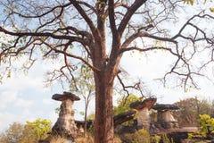 Roche de champignon Forme d'imagination de pierre antique avec le primitif pour Images libres de droits