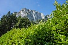 Roche de Drachenwand en Autriche Un peuple de portion de montagne pour des sports, par l'intermédiaire des ferrats photographie stock libre de droits