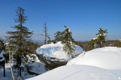 Roche de forêt d'hiver Photo stock