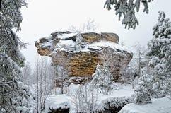 Roche de forêt d'hiver Photographie stock