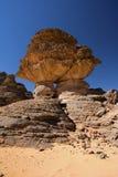 Roche de grès dans le désert Images libres de droits