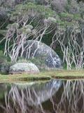 roche de lune Photo libre de droits